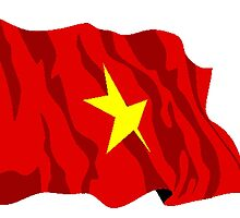 Vietnam Flag by kwg2200