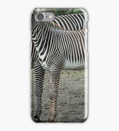 Multi Stripes iPhone Case/Skin
