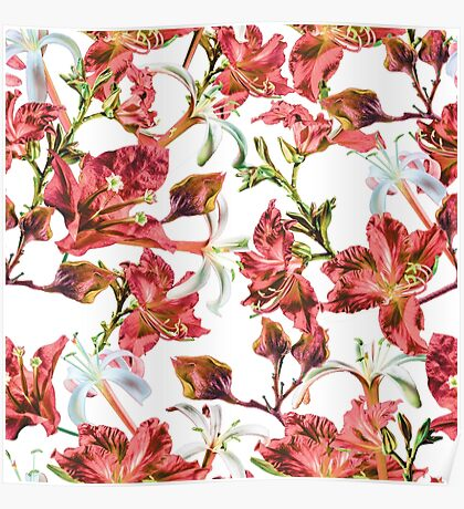 Red and White Tropical Floral by Grand Reverie Poster