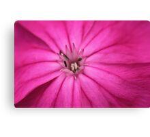 Pink Crown Canvas Print