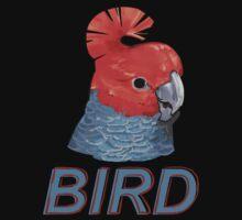 BIRD - Gang Gang Cockatoo (Male) by Ari Hunt