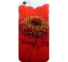 Gerbera....stunning red iPhone Case/Skin