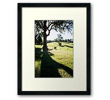 0320  Jenny's Garden Framed Print