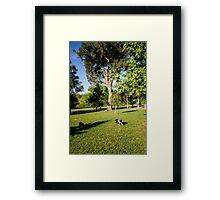 0323 Jenny's Garden Framed Print
