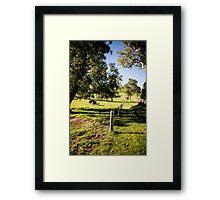 0324Jenny's Garden Framed Print