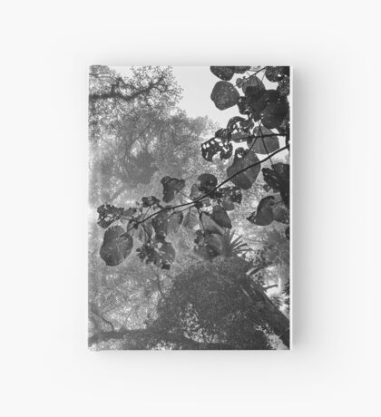 Look up - and up and up! Hardcover Journal
