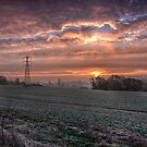 Barming Fields At Dawn by Dave Godden