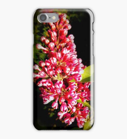 Pink Lilac iPhone Case/Skin