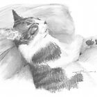 Departed cat drawing by Mike Theuer