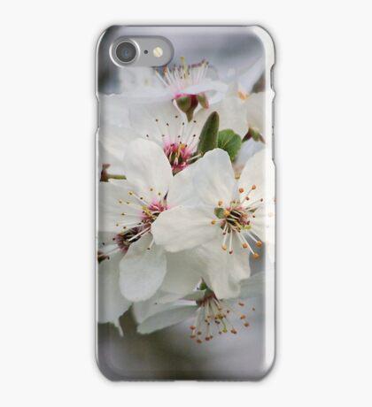 Cherry Blossom Zen Yoga iPhone Case/Skin