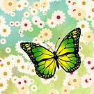 Green butterfly by Gaspar Avila