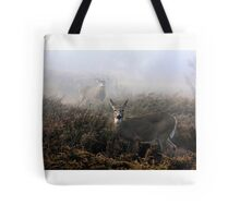 The rut is on! - White-tailed Doe and Buck Tote Bag