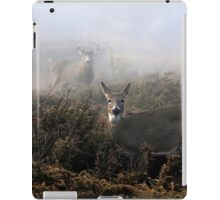 The rut is on! - White-tailed Buck and doe iPad Case/Skin