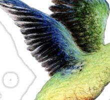Orange Bellied Parrot Sticker