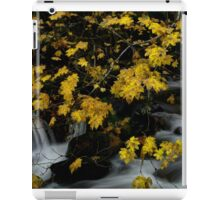 Vine Maple and Water iPad Case/Skin