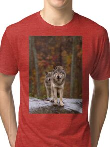 Double Trouble - Timber Wolves Tri-blend T-Shirt