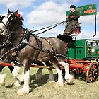 Fuller's Brewery Dray Horse and Cart by Gemma Cooles