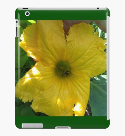 Squash Blossom With Bee Pollinating iPad Case/Skin