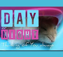 Thinking of You - Hamster 2 - by PBdesigns