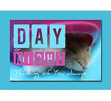 Thinking of You - Hamster 2 - Photographic Print