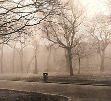 Park in Fog by aneirawilliams