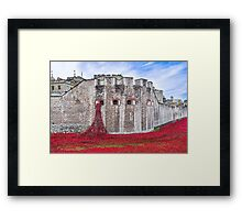 Poppies at The Tower Of London Framed Print