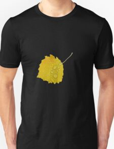 Autumn leaf in rain T-Shirt