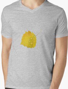 Autumn leaf in rain Mens V-Neck T-Shirt