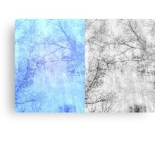 Bare trees branches 2 Canvas Print