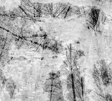 Bare trees branches 5 by AnnArtshock