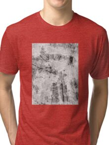 Bare trees branches 5 Tri-blend T-Shirt