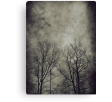 Dark trees 2 Canvas Print