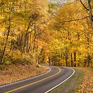 Blue Ridge Parkway by J. Day