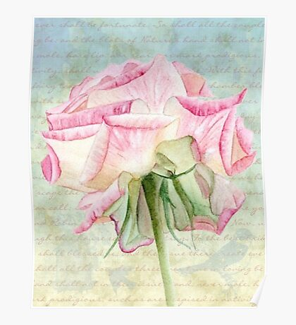 Blush Pink Rose and Script Poster