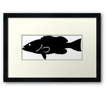 Gag Grouper Fish Silhouette (Black) Framed Print