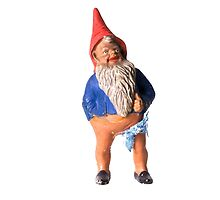 Franky the Gnome by kitschbitsch