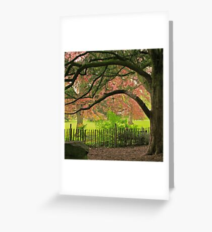The Museum Gardens Greeting Card
