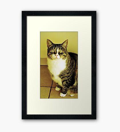 I am yours Framed Print