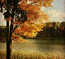 Fall along the lake by vigor