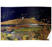 Vineyards Les Crêtes  Poster