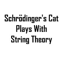 Schrodinger's Cat Plays With String Theory Photographic Print