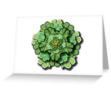 Butterfly Effect • Green Greeting Card