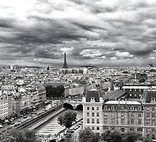 PARIS 11 by Tom Uhlenberg