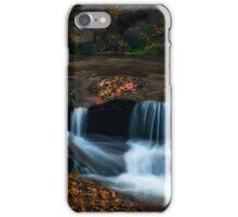 Autumn Creekside  iPhone Case/Skin