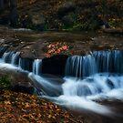 Autumn Creekside  by Saija  Lehtonen