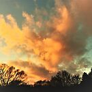 Golden Clouds by Graphxpro