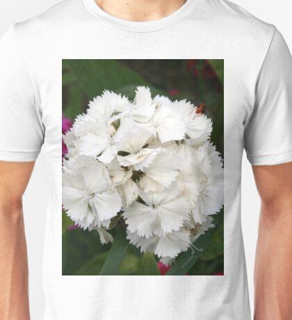 Dianthus barbatus Unisex T-Shirt