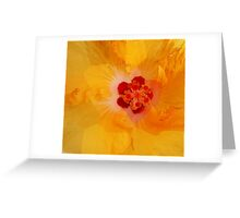 Gold Hibiscus Greeting Card