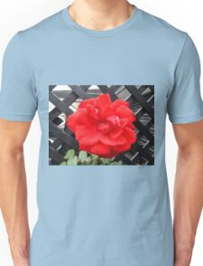 Red Red Rose Unisex T-Shirt