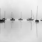 sailboats 2 by dc witmer